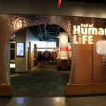 Hall of Human Life Entrance