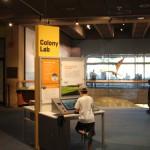 Colony Lab Interactive