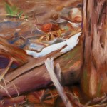 Stump - Spring 2008, Chalk Pastel